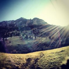 Eden Dohm ‏@gardenofeadz From the #hike today. #sunshine #Colorado #boulder pic.twitter.com/VB29VoYCDy