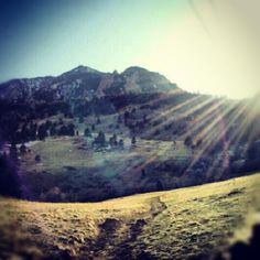 Eden Dohm @gardenofeadz From the #hike today. #sunshine #Colorado #boulder pic.twitter.com/VB29VoYCDy