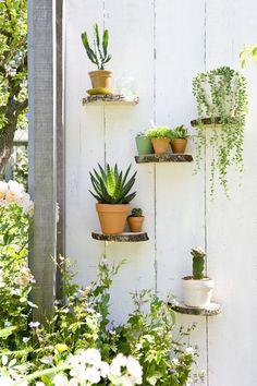 (via STIJLVOL STYLING - WOONBLOG Interieur, woonideeën, buitenleven, zelf maak ideeën, feest styling tips: Groen wonen & DIY | Zomerse ideeën met vet planten & cactussen   DIY mini tuintje maken)