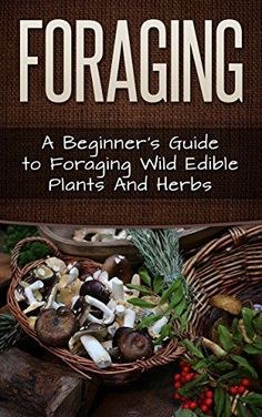 FREE TODAY Foraging: A Beginner's Guide to Foraging Wide Edible Plants and Herbs (Foraging, Survival, Homesteader Book 1) by Carmel Maher www.amazon.com/...