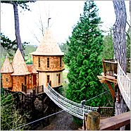 Awesome treehouses!