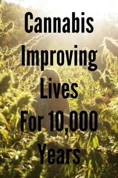Improving lives for 10,000 years.
