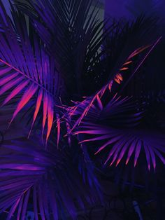 May 24 2017 at 10:09PM from patternbase