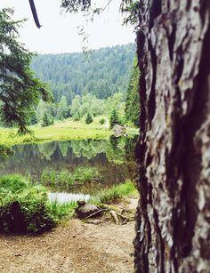 Kleiner Arbersee! #Wanderung #Bodenmais #BayerischerWald #Urlaub #Ferienwohnung-Fritz