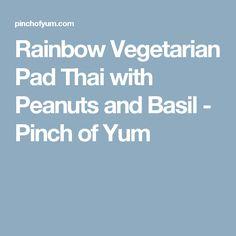 Rainbow Vegetarian Pad Thai with Peanuts and Basil - Pinch of Yum