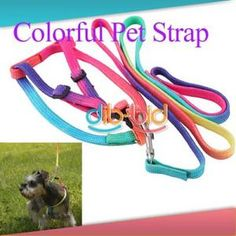 Colorful Lovely Pet Nylon Leash Harness Chest Collar Neck Lead Strap Dog Puppy $2.75