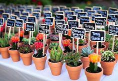 Des petites plantes en guise de marque-place