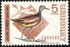 Wattled Jacana stamps - mainly images - gallery format