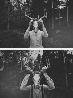 skeleton, deer skull, back and white, photography, skull and antlers