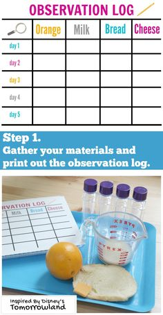 Make predictions about which food will rot first. Help your kids make observations and record on your log. Inspired by the movie Torrowland. Preschool Science, Science Classroom, Science Activities, Activities For Kids, Stem Projects, Science Projects, School Projects, Craft Projects, Science Experiments Kids