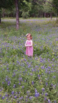 Quinn in a field of bluebonnets