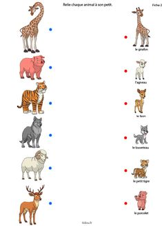 1 million+ Stunning Free Images to Use Anywhere Fun Worksheets For Kids, Animal Activities For Kids, Educational Activities For Kids, Preschool Worksheets, Infant Activities, Kindergarten Activities, Fun Learning, Animals For Kids, Kids Education