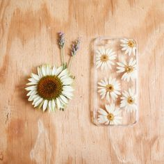 Daisy pressed flower iPhone 6 case
