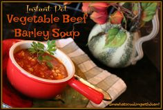 Sew what's cooking with Joan!: Instant Pot Vegetable Beef Barley Soup
