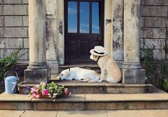 Dog Lover Restores Historic Mansion while her Labradors Live the Downton Abbey Dream