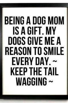 I ♥ being a dog mom!