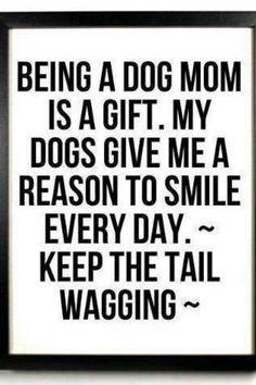 I ♥ being a dog mom!