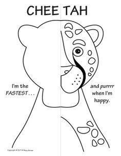 jungle animals symmetry activity coloring pages - Arts And Crafts Coloring Pages