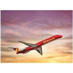The founders of defunct budget airline plan to launch a new low cost carrier, SkyWise, in the first quarter of next year. South African News, Budget, Posts, Memories, How To Plan, Nice, Memoirs, Messages, Souvenirs