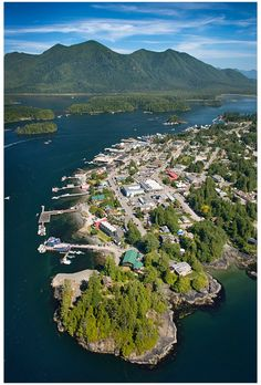 Tofino, BC - Whale watching - Surf lessons - Kayaking - Hiking - Paddle boarding - Boogie boarding - Camping on the beach - Hot Springs tour