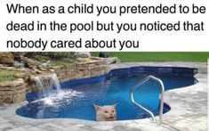 Let's get rid of frustration and enjoy these amazing funny pictures to make you feel amazing and relaxed. These funny photos will make you laugh so hard for sure. Here are 23 Funny photos LOL Funny Animal Memes, Funny Relatable Memes, Cat Memes, Funny Texts, Dankest Memes, Funny Animals, Funny Jokes, Funniest Quotes, Funny Laugh