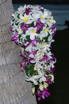 trailing bouquet - orchids and frangipani
