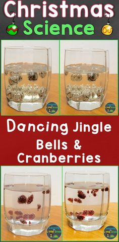 Fun Christmas science experiments for kids, students - dancing jingle bells and dancing cranberries. Find this plus 11 more fun Christmas science experiments on my blog. Keep students engaged the weeks before Christmas break! #science #scienceforkids #christmasforkids #christmasactivities #christmasactivity #christmasactivitiesforkids