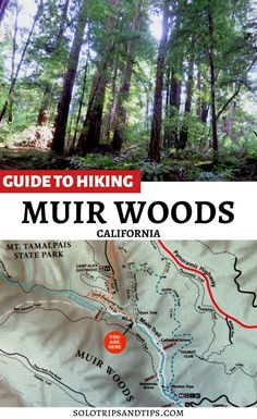Guide to hiking Muir Woods - Marin County California. Take a scenic drive from San Francisco to the pristine redwood forest at Muir Woods in Marin Co California. Get all the info on tickets to Muir Woods, shuttle to Muir Woods, map of the hiking trails at Muir Woods. Make your Muir Woods reservation today and explore the beauty of the California coast and beautiful redwood trees. #redwoods #muirwoods #california #calihikes #hikecalifornia #marincounty #getoutdoors #hiking Hiking Trail Maps, Hiking Tours, Hiking Trails, Summer Vacation Spots, Vacation Ideas, Beautiful Places To Travel, Cool Places To Visit, Marin County California, Travel Ideas