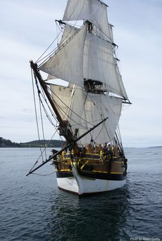 famous ships   Lady Washington   My Dream Sailboat