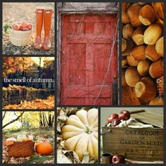 The smell of autumn. #moodboard  #byJeetje♡