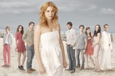 The main cast of Revenge. The people Emily Thorne so easily cuts out of the picture obviously are not seen here.