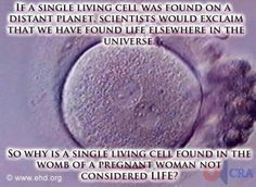 Must be attached to the endometrial layer to even survive, but the basic premise- yes.