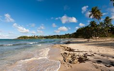 Playa Rincon: Set on the eastern shore of the Samaná Peninsula, this is one of the country's most beautiful stretches of white sand, a remote corner of paradise where the water is warm, turquoise, and ideal for swimming.
