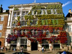 Green Wall of Flowers, Copenhagen