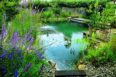 piscina biológica