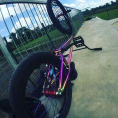 Mi bici