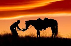 the cowboy thanks his horse with the respect that he would have for his best friend