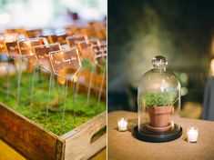 "Escort cards were actually copper garden markers, ""planted"" in boxes of moss."