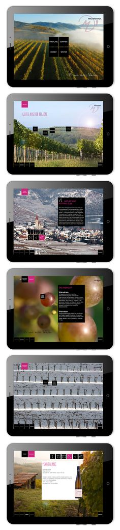 Machherndl App mit Informationen zum Weingut und Wein. Auswahl der Jahreszeit möglich.