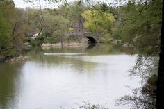 Stunning Central Park Visiting Nyc, Central Park, New York City, River, Pictures, Outdoor, Beautiful, Photos, Outdoors