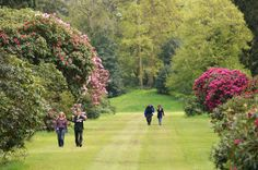 19 Best Luton Hoo Bedforshire Images In 2013 Fenced