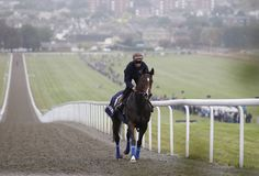 Newmarket Open Day 2014