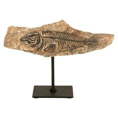 Resin Fossil on Metal Stand - Fish