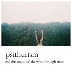 Love this!!! ♥ psithurism - The sound of the wind through the trees.