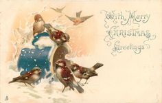WITH MERRY CHRISTMAS GREETINGS  many sparrows around blue pot in snow