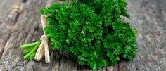 Petersilie – mehr als nur das schöne Grün auf dem Teller. Petersilie gilt als das Wunderkraut unter den Pflanzen. Sie aktiviert körpereigene Abwehrkräfte, wirkt als natürliches Schmerzmittel und hilft den Körper zu entgiften... http://superfood-gesund.de/petersilie/