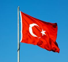 Turkish flag - Normally seen at governmental institutes.