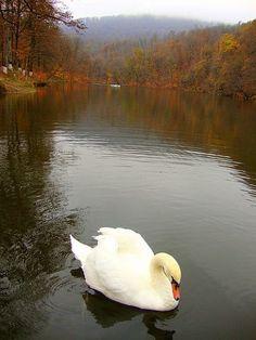 Parz lake, Dilijan, Armenia.