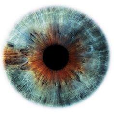 #eye #iris #mandala #geometry #angle
