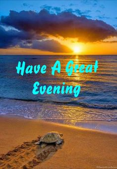 Good Evening Images Beautiful Good Evening Messages Wishes Quotes